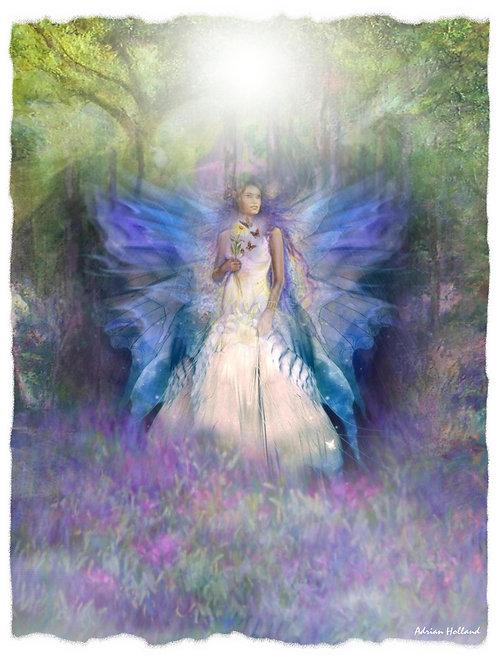 A4 Fairy Framed Print