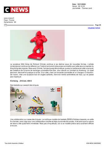 Pressbook Kiwikong_Page_12.jpg