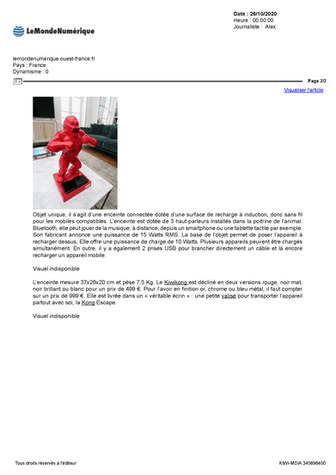 Pressbook Kiwikong_Page_07.jpg