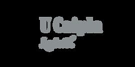Lokal logo.png
