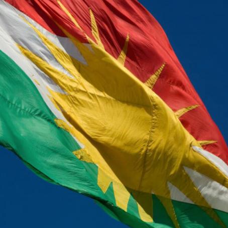The Kurdish Community in Sweden: Organizing a Diaspora