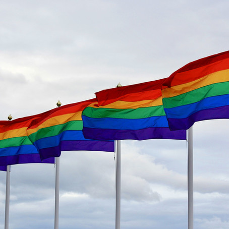 The Indirect Influence of the ECtHR on the Russian Legislature Concerning the LGBT Community