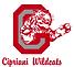 logo-cipriani.png