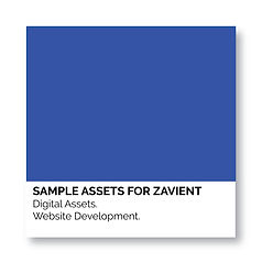 square SWATCH samples for zavient.jpg