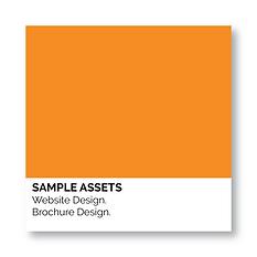 Sample Assets web brochure.png