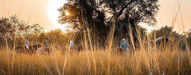 Simalaha Horse Safari Zambia Ntanda Ventures 5.jpg