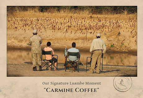 Luambe sig moment carmine-coffee-1.jpg