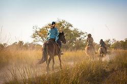 Simalaha Horse Safaris Zambia Ntanda Ventures