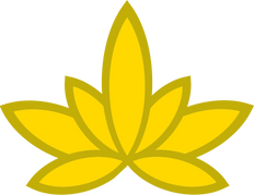 Золотой лотос забайкальск