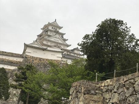 高知から神戸へ。
