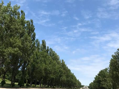 前田公園へ☆