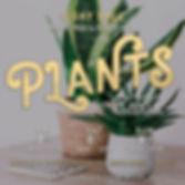 plants-feb-insta.jpg