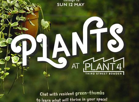 Plants at Plant 4 | May 8 - 12 May