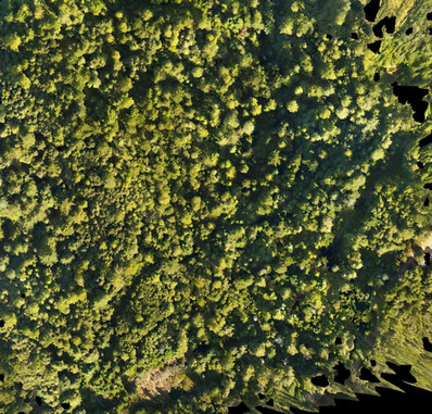 Drone photography for mapping