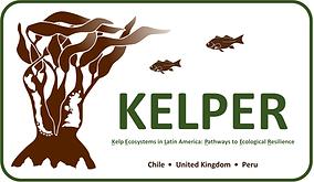 KELPER.png