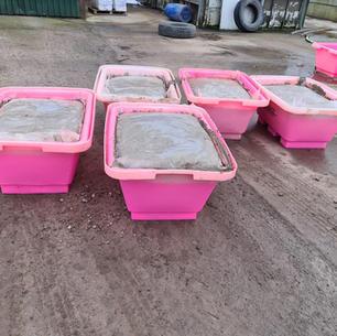 Ready Mixed Mortar in Tubs