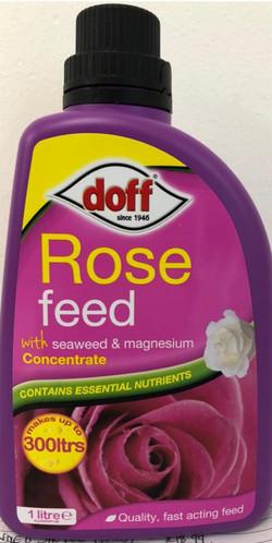 Rose Feed