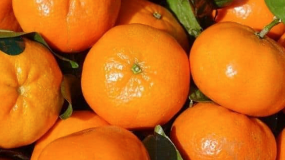 Clementines (£/each)