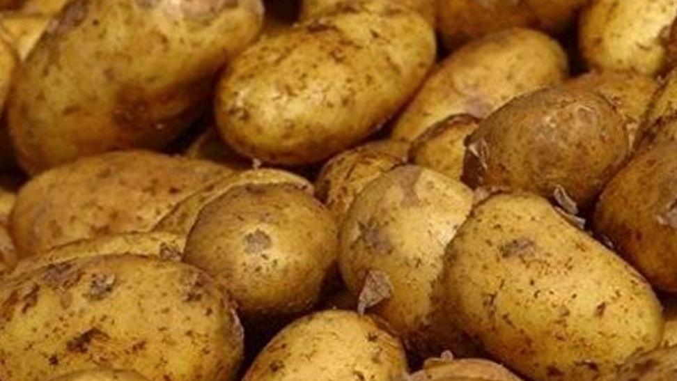 Maris Piper Potatoes (£/500g)