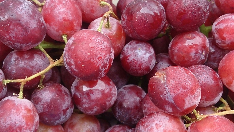 Grapes Red (£/bunch)