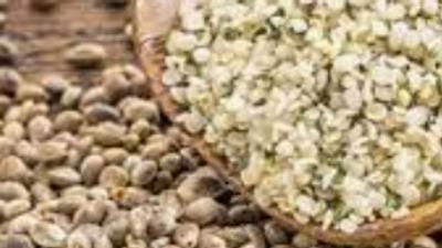 Dispensed Organic Hemp Seeds (£/100g)