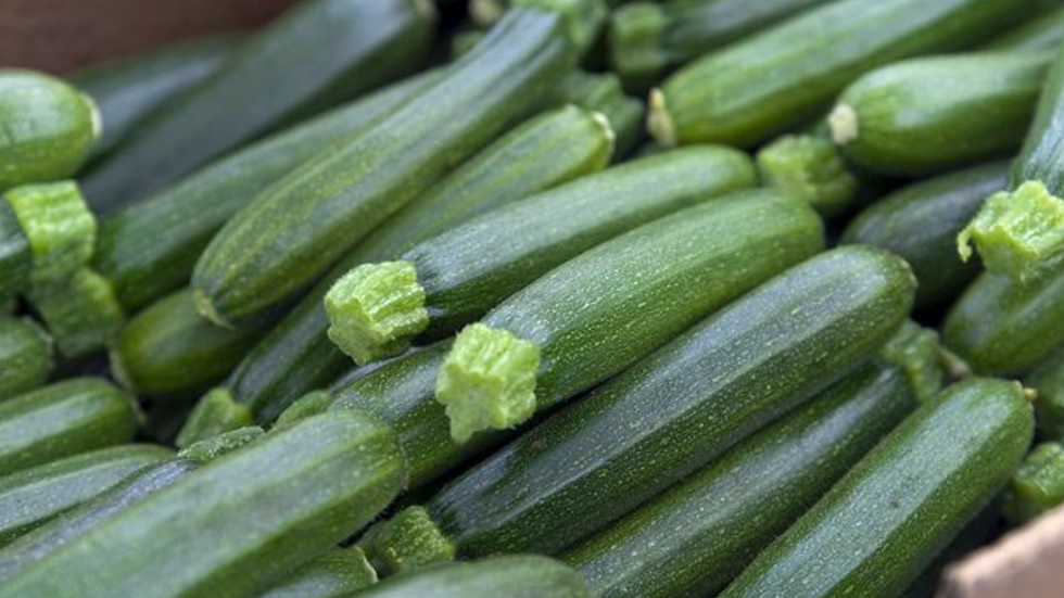 Courgettes Large (£/each)
