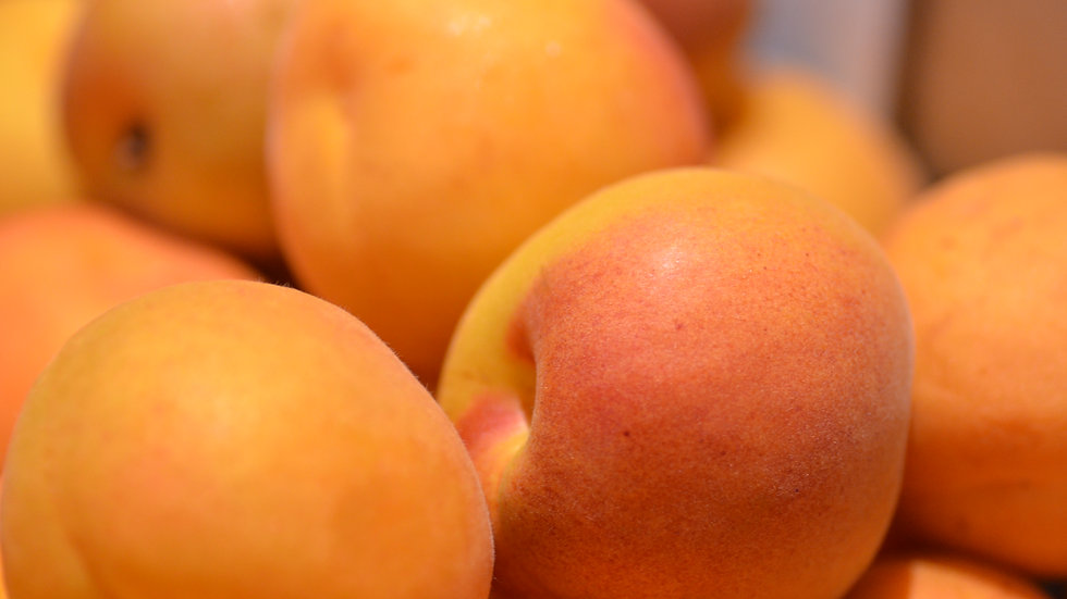 Apricots (£/500g)