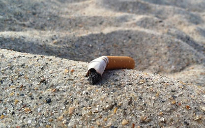 cigarettebuttsonbeach-thumb-large.jpg