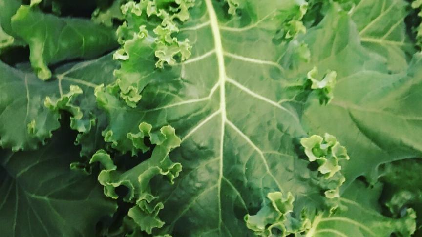 Kale (£/bag)