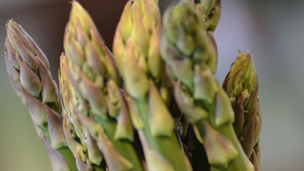 Asparagus (£/bunch)