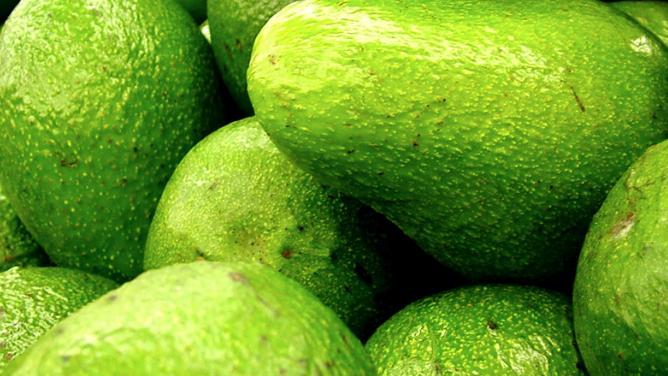 Avocado Large (£/each)
