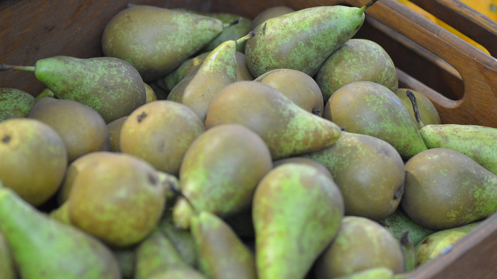 Pears (£/500g)