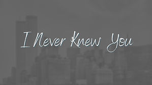 I Never Knew You.jpg