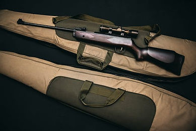 Gun Pic rifle.jpeg