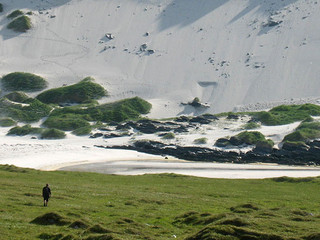 To Storsanden on Sørøya