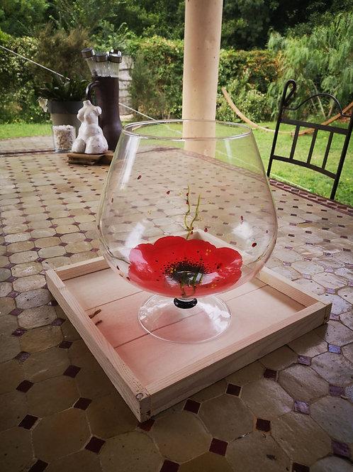 Grand Vase Cognac Coquelicot couleur au choix