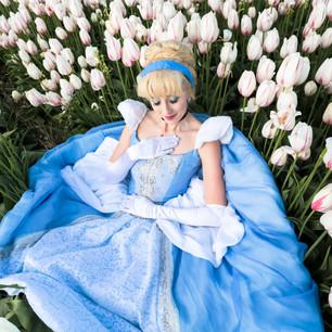 Cinderella- Classic