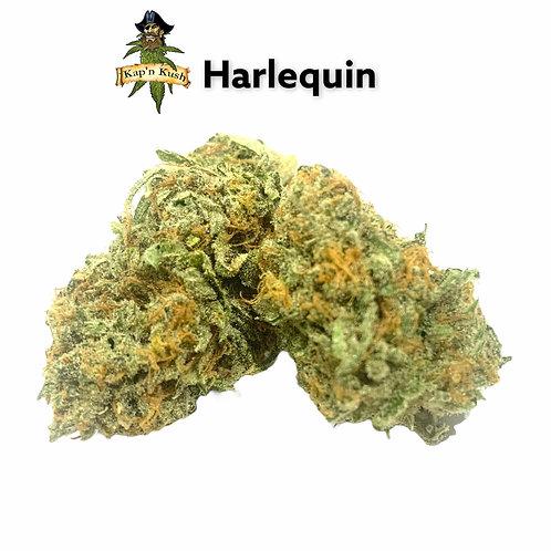 Harlequin (AAA) 26% THC
