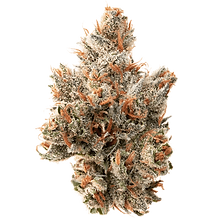 cannablue-premium-flower-nug-550x550-1.p