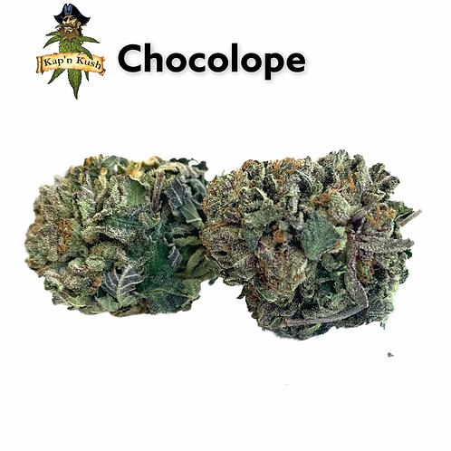 Chocolope   AA   25%THC   SATIVA