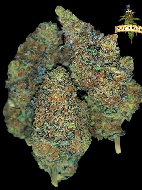 GODFATHER OG (AAAA) - 30% THC