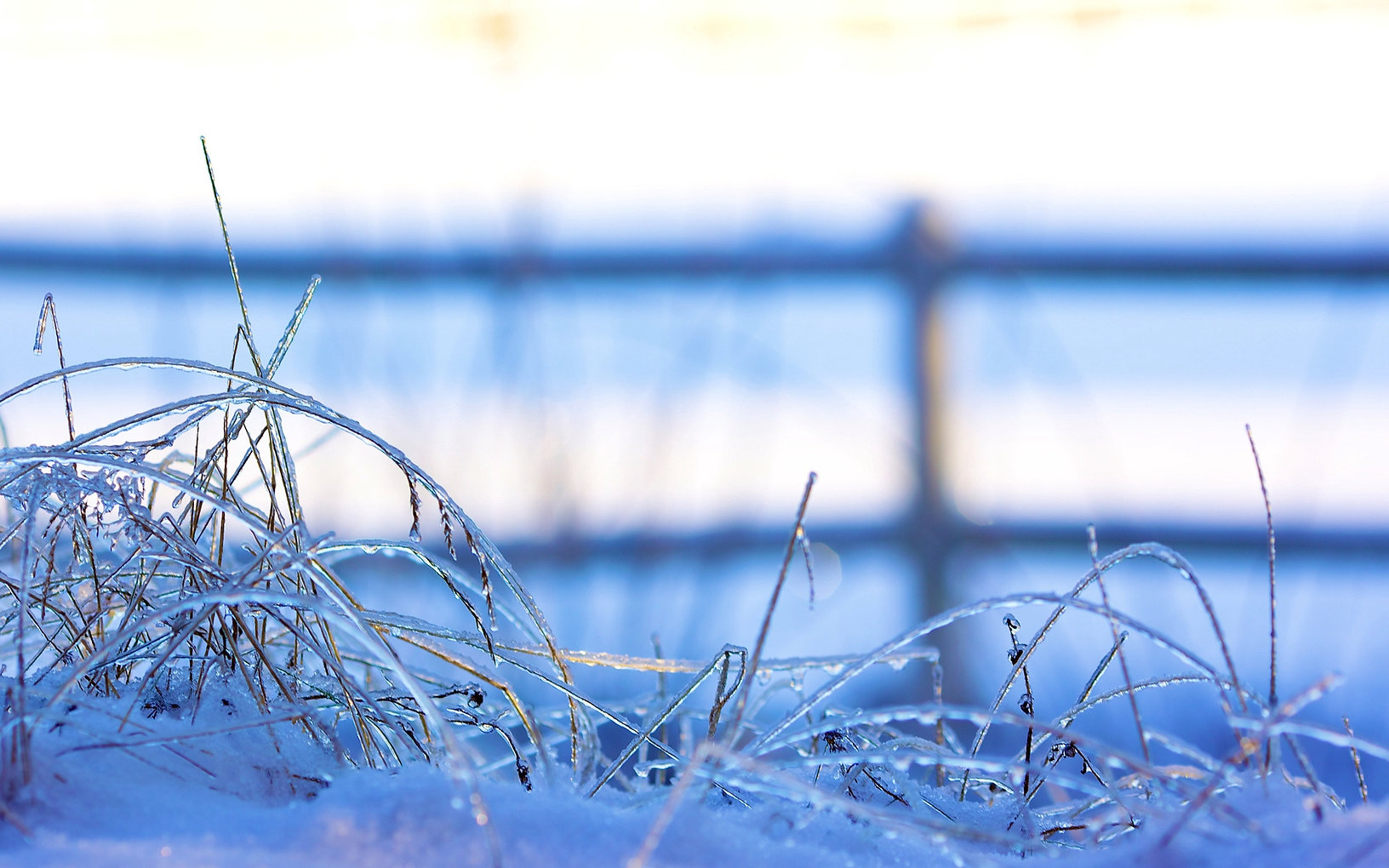 snow_frozen_grass_ice_winter_80994_1920x
