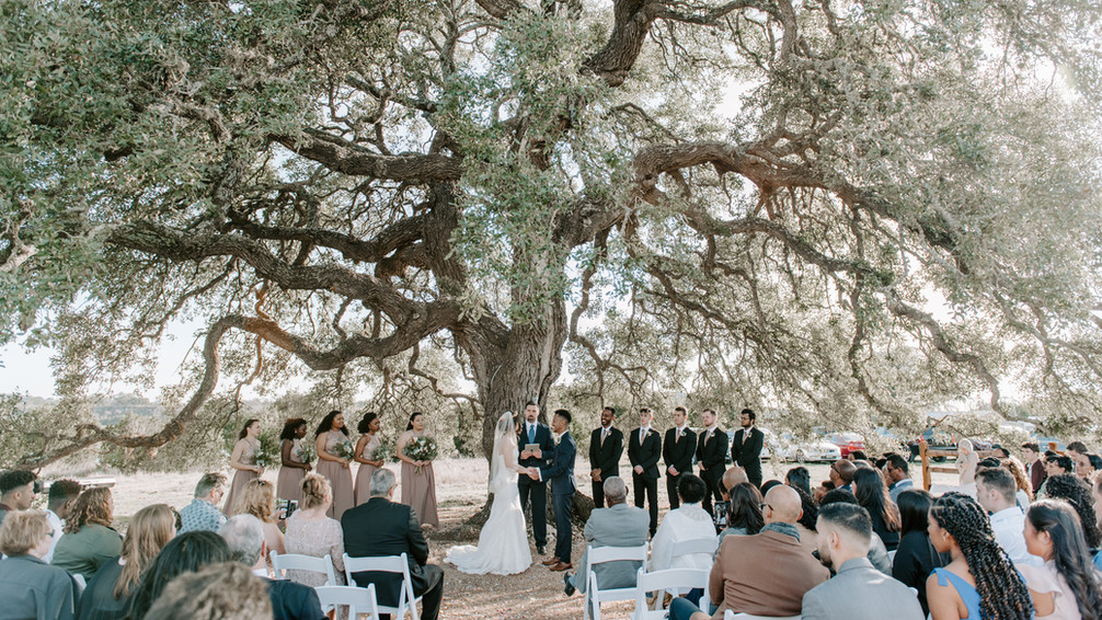 Cascade Oak outdoor Ceremony Site: The Alexander at Creek Road voted Best of Wedding Wire Hill Country Wedding Venues