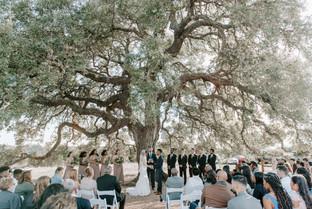 Cascade Oak Ceremony Site