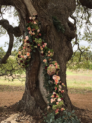 Dream Wedding Venues in Texas; The Flower Girl in Dripping Springs decorated out beautiful Cascade oak for Amy's wedding at The Alexander at Creek Road, down from Camp Lucy, Pedernales Falls State Park, Ma Maison, Firefly Farms, and Lucky Arrow Retreat
