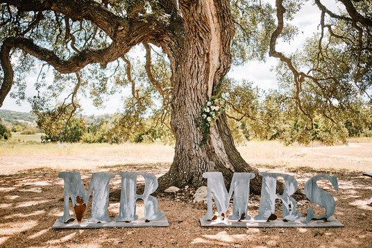 Get married in Dripping Springs
