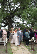 Wedding Venues with amazing trees for ceremonies the alexander at creek road