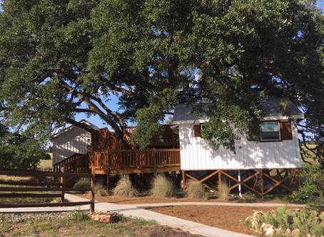 Treehouse Cottages!  Come Visit!