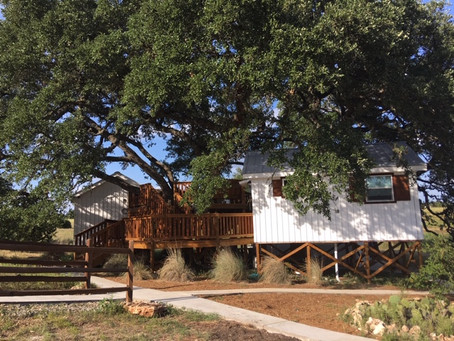 Treehouse Cottages!  Come Visit!