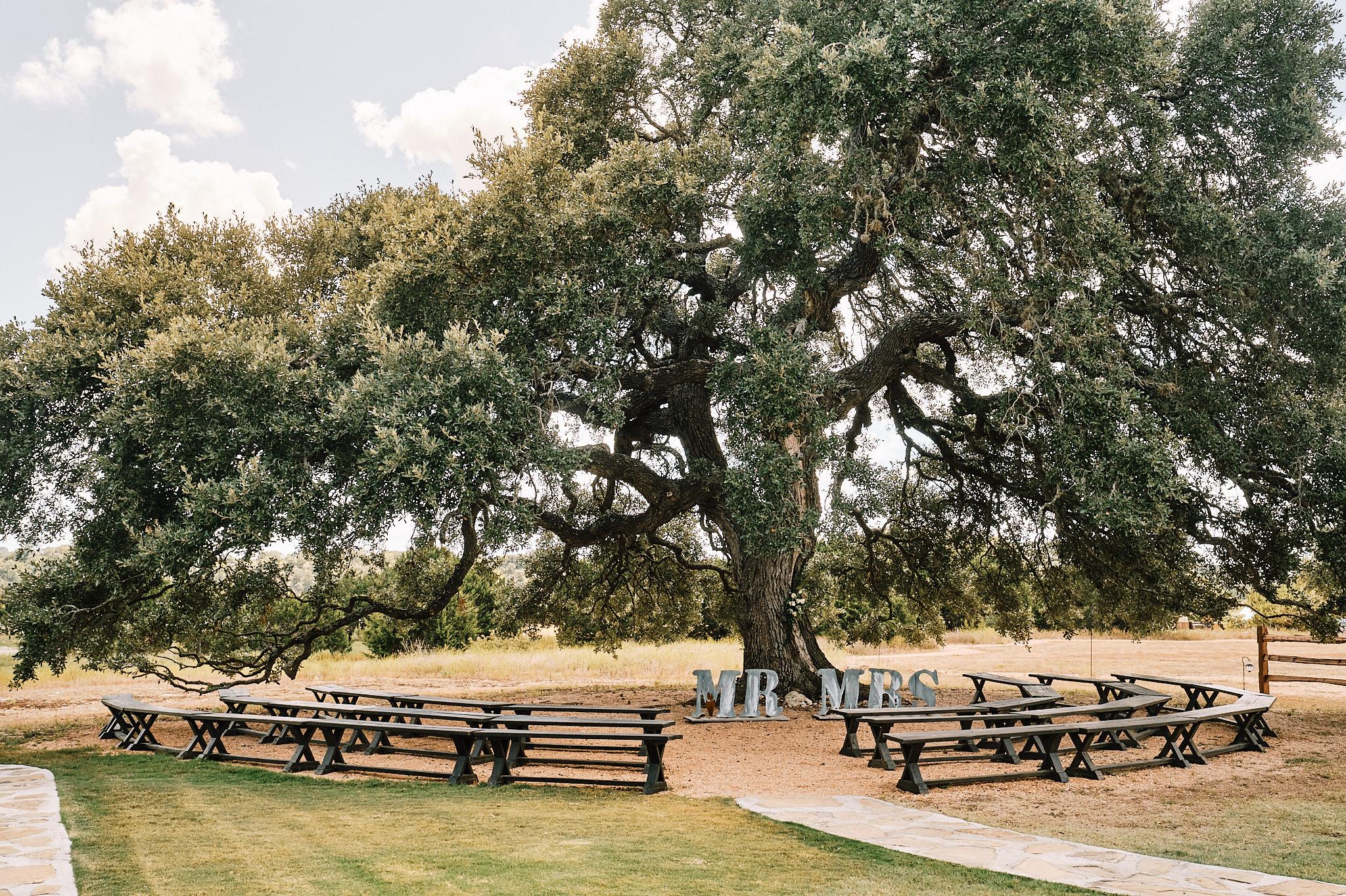 Cascade Oak